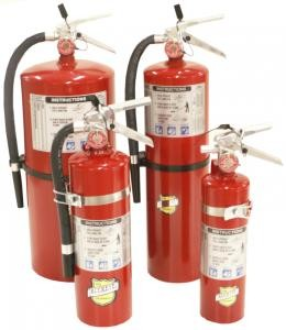 Buckeye 2-1/2 lb. ABC Fire Extinguisher(USA)