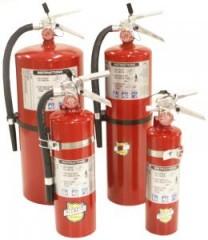 Buckeye 10-lb. ABC Fire Extinguisher(USA)